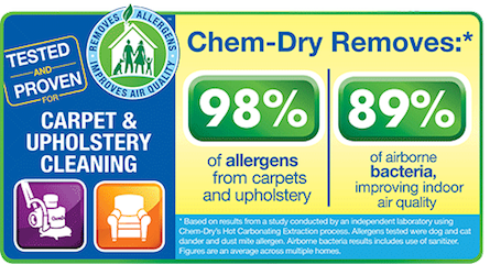 Chem-Dry Carpet and Upholstery Cleaning ...